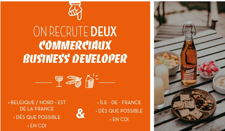 Offre d'emploi :  commerciaux business developer – CDI